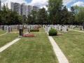 Bathurst_Lawn_Memorial_Park (7)