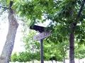 Bathurst_Lawn_Memorial_Park (9)