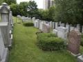 Jones_Avenue_Cemetery (6)