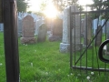 Lambton_Hills_Cemetery (1)