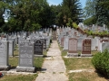 Lambton_Hills_Cemetery (6)