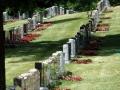 Pardes_Shalom_Cemetery (1)