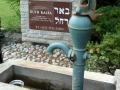 Pardes_Shalom_Cemetery (3)